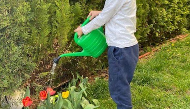 Wiosna w ogródku – 14-17.04.2020