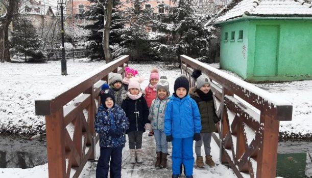 Obserwacja zimowej przyrody