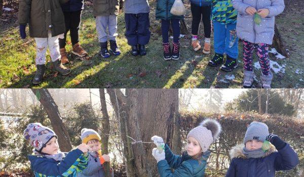 Zimowe zabawy – pomagamy ptakom