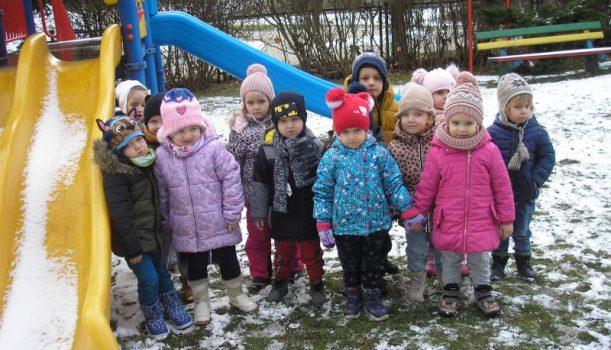 Zimowe obserwacje przyrodnicze