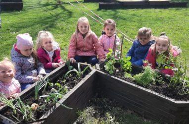Wiosenne prace wogródku przedszkolnym